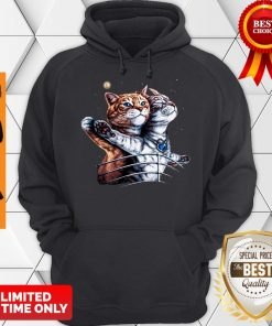 Official Titanic Cats Funny Cat Lovers Hoodie