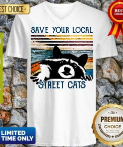 Awesome Racoon save Your local street cats vintage V-Neck
