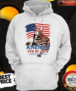 NICE CAT AMERICAN 4TH OF JULY FLAG VETERAN INDEPENDENCE DAY HOODIE