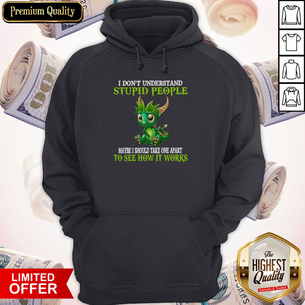 Nice Dragon I Don't Understand Stupid People Maybe I Should Take One Apart To See How It Works Hoodie