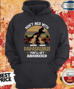 Official Don't Mess With Bronson Cannon Papasaurus You'll Get Jurasskicked Vintage hoodie