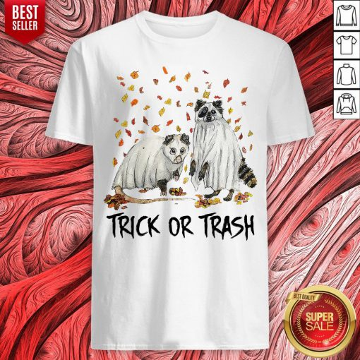 Awesome Opossum And Raccoon Ghost Trick Or Trash Shirt