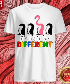 Perfect Flamingo It's Ok To Be Different Shirt