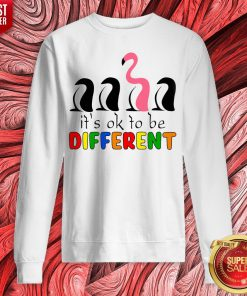 Perfect Flamingo It's Ok To Be Different Sweatshirt