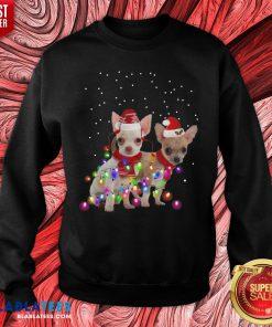 Cute Dog Graphic Chihuahua Xmas Lights Sweatshirt - Design By Blablatees.com